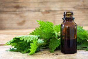 Вены на животе – причины, симптомы, лечение
