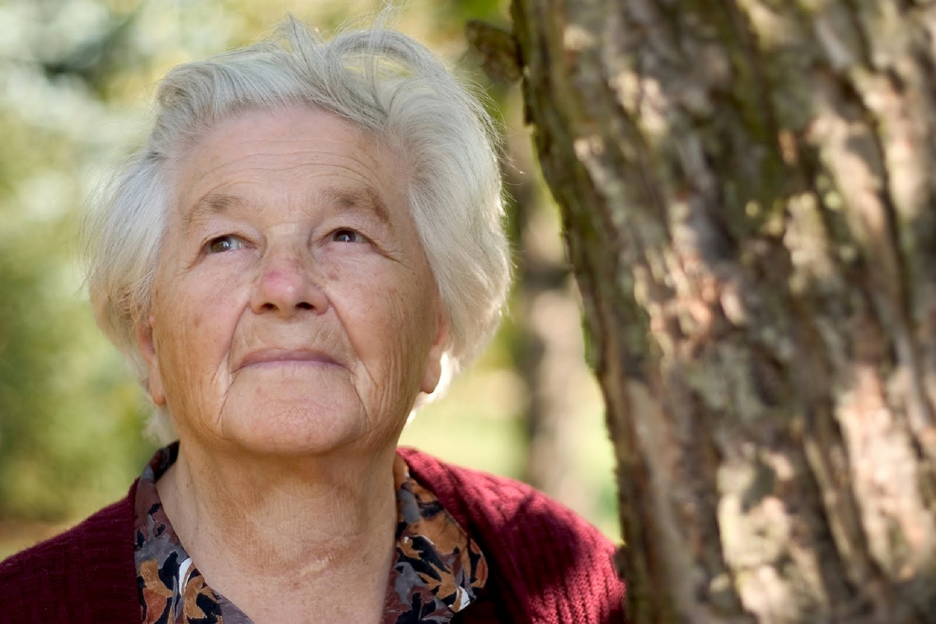 Пожилые дамы видео высокое качество
